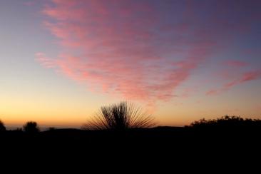 Sonnenuntergang bei Boranup